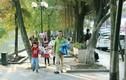 Dự báo thời tiết 4/1, Hà Nội đón nắng ấm đến hết tuần