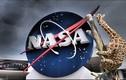 """Hươu cao cổ làm """"quân sư"""" cho NASA"""