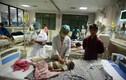 Rúng động bê bối bệnh viện: Các nước mạnh tay xử lý thế nào?