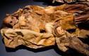 Bí mật cực sốc xác ướp 500 tuổi hoàn mỹ nhất hành tinh