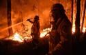 Top thảm họa cháy rừng khủng khiếp nhất lịch sử nhân loại