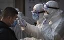 Rùng mình tiên tri kinh hãi về đại dịch corona càn quét toàn cầu?