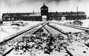 Vì sao quân đồng minh không ném bom trại Auschwitz của Hitler?
