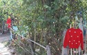 Ngôi làng nhà nào cũng treo áo đỏ ở cổng và sự thật đáng sợ phía sau
