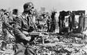 Bí mật ít biết về trận Stalingrad nổi tiếng Thế chiến 2