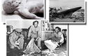 Sự thật chấn động vụ khám nghiệm thi hài người ngoài hành tinh 1955