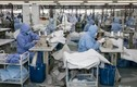 Covid-19: Ngành y dược đang giúp kinh tế Trung Quốc khởi sắc
