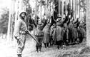 Những hình ảnh cuối cùng của phát xít Đức trước ngày đại bại