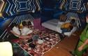 45 người dương tính ma túy trong nhà nghỉ ở TP Huế
