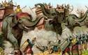 Bí mật đàn voi chiến hung dữ của thế giới cổ đại