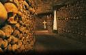 Hầm mộ Paris ở Pháp từng được sử dụng để trồng nấm thế nào?