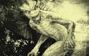 Rùng rợn những sinh vật bí ẩn gây tò mò nhất thế giới