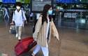Dừng mọi chuyến bay chở khách giữa TP.HCM và Hà Nội