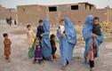 Cực sốc lý do phụ nữ Afghanistan bị Taliban bắn chết bất cứ khi nào
