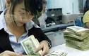 Tỷ giá ngoại tệ ngày 25/9: USD hạ nhiệt, Nhân dân tệ giảm mạnh