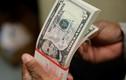Tỷ giá ngoại tệ ngày 16/11, USD ít biến động