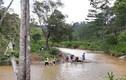 Dân mạng tiếc thương nam VĐV marathon bị lũ cuốn trôi tại Lâm Đồng
