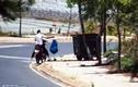 Bị phạt tiền triệu vì vứt rác bừa bãi cạnh... thùng rác