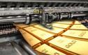 Giá vàng hôm nay 19/8: Giao dịch ổn định, vàng đang đi sai hướng, điều gì quyết định giá tăng hay giảm?