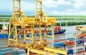 Vinachem đấu giá toàn bộ vốn tại Cảng đạm Ninh Bình