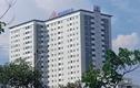 Cổ phiếu HDC tăng nóng, Vietinbank Securities muốn thoái toàn bộ vốn