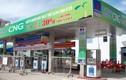 CNG Việt Nam điều chỉnh giảm 40% kế hoạch lợi nhuận năm 2020