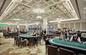Vì sao cổ phiếu ông chủ casino Quảng Ninh RIC tăng trần 12 phiên liên tiếp dù kinh doanh ảm đạm?