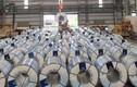 Sản lượng ống thép của Hòa Phát trong tháng 2 tăng 11%