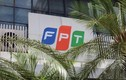 FPT sắp phát hành 118 triệu cổ phiếu trả cổ tức
