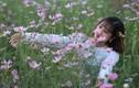 Cánh đồng hoa hướng dương khiến giới trẻ ngây ngất ở Bắc Giang