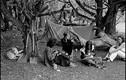 Soi lối sống dị của trào lưu Hippie thập niên 1960-1970 (2)