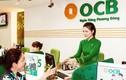 Trước thềm lên sàn chứng khoán, OCB báo lợi nhuận quý 3 lao dốc
