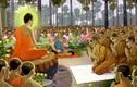 Câu chuyện Phật Giáo: Thành tâm khấn Phật, cớ sao phải chịu mất cánh tay?