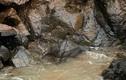 Thái Lan đặt lưới lớn vớt xác 6 con voi chết ở thác nước tử thần