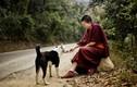 Nguồn sức mạnh vĩ đại mà Đức Phật luôn ban tặng cho mỗi người