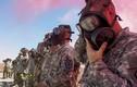 Những loại virus, vũ khí hóa học nguy hiểm nhất quân đội Mỹ từng đối mặt