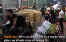Chợ hoa lớn nhất Thủ đô đông 'nghẹt thở' đêm trước 8.3