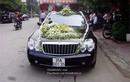 Đám cưới 'ngập' xe sang, biển khủng đất Ninh Bình