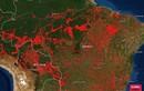 Cháy rừng Amazon khủng khiếp hơn cả vũ khí hủy diệt hàng loạt?