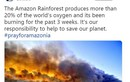 Loạt sao bị tố 'sống ảo' vì đăng nhầm ảnh về vụ cháy rừng Amazon