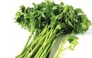 Bị gan nhiễm mỡ, cần ăn nhiều rau