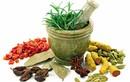 Bài thuốc Sinh địa bát vật giúp ổn định đường huyết