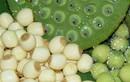 Rượu hạt sen giúp đàn ông chữa xuất tinh sớm