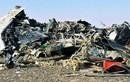 Tiết lộ mới nhất nguyên nhân máy bay Nga rơi tại Ai Cập
