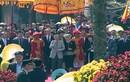 Nhà vua và Hoàng hậu Nhật Bản cảm kích tình cảm người Huế