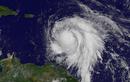 """Sau Irma, vùng Caribe lại phải """"gồng mình"""" trước siêu bão Maria"""