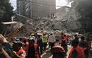 Hiện trường vụ động đất ở Mexico, 140 người chết
