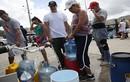 15 bức ảnh về khủng hoảng nhân đạo ở Puerto Rico