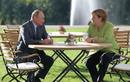 Gặp Thủ tướng Đức Merkel, Tổng thống Nga Putin thảo luận vấn đề gì?