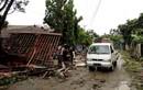 """Nhân chứng sóng thần Indonesia: """"Tôi chỉ còn biết cầu nguyện và chạy"""""""